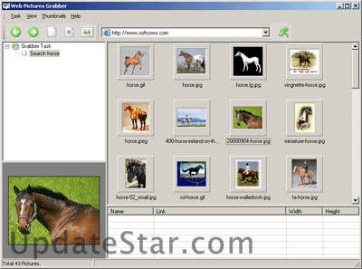 Web Pictures Grabber 2.0